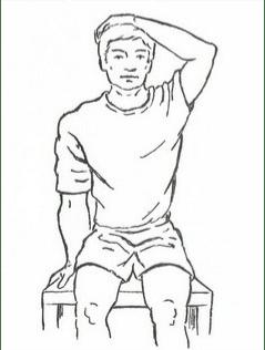 Ejercicios de estiramientos para cervicales Fisioterapia Enrique Sierra Fisioterapeuta Zaragoza