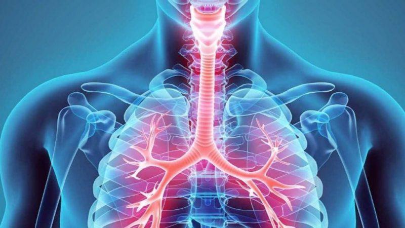 Rehabilitación pulmonar y terapia respiratoria en zaragoza