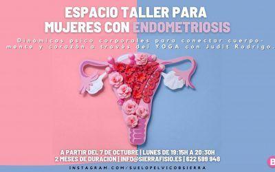 Ciclo taller para mujeres con endometriosis en Zaragoza